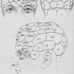 head and face reading